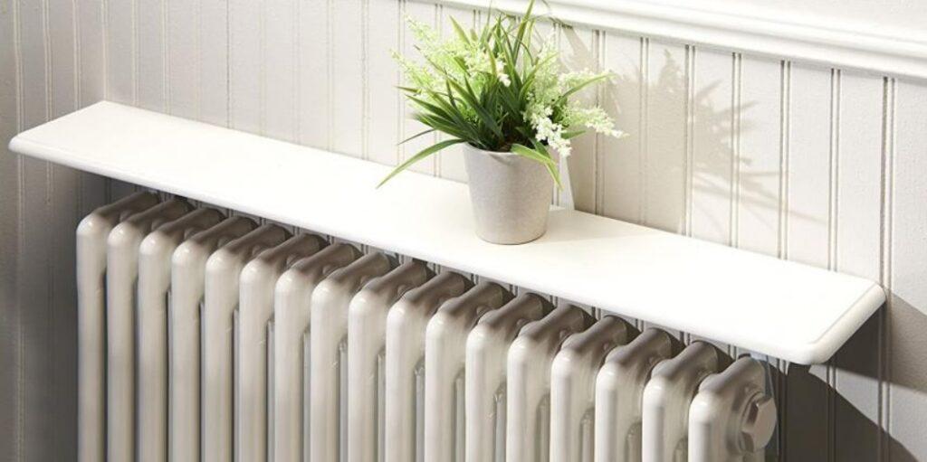 Plante au dessus d'un radiateur