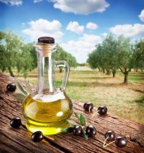 Maladie de l'olivier : les problèmes expliqués